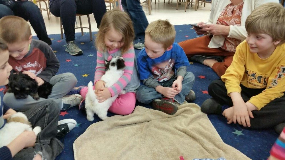 hava school visit (10)