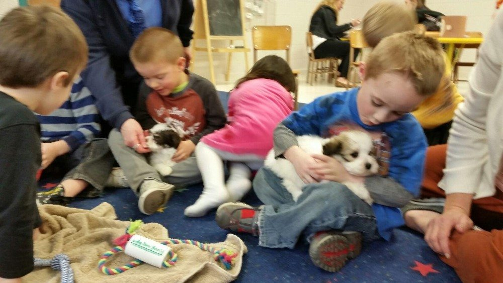 hava school visit (12)