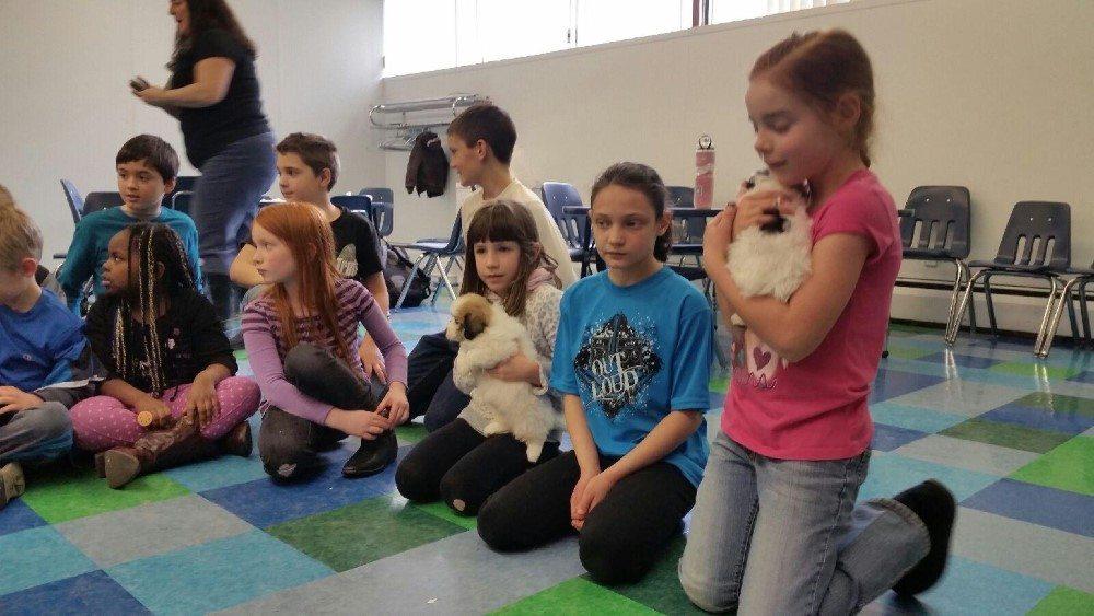 hava school visit (6)