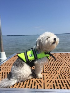 Copa loves be outside on the water.