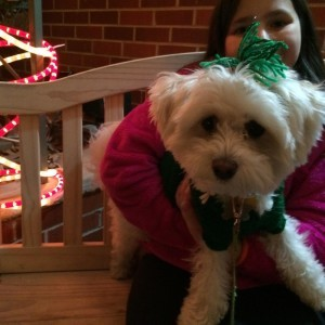 Merry Christmas from Kipper