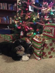 Merry Christmas from Kramer