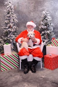 Pico has Santa's heart!