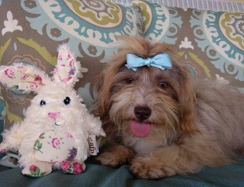 Winnie is a Delightful Little Lady