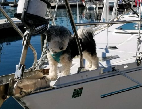 Charlie Takes Charge Docking the Boat